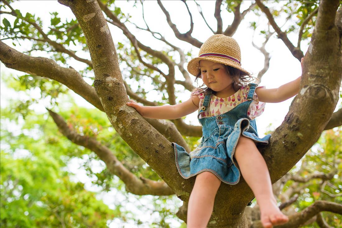 Little girl climbing tree
